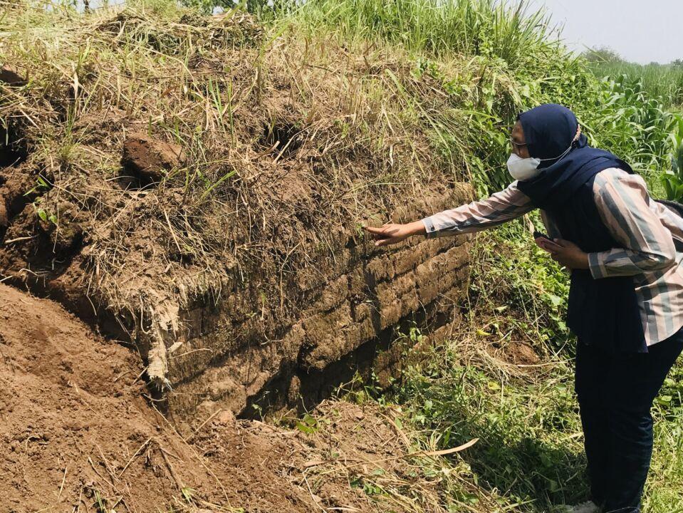 BPCB Temukan Situs Mirip Candi di Persawahan Mojokerto